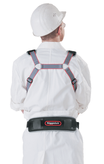 Carrying harness with snap hooks rear view